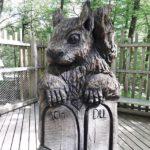 Eichhörnchens Sitzplatzangebot
